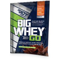 1 Ad. 33 Gr Bigjoy Whey Protein Şase