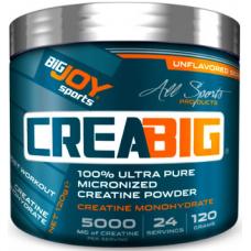 BigJoy Sports CreaBig Micronized Kreatin Powder 120 Gr