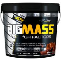 BigJoy Sports Big Mass +GH Factors 1200 Gr