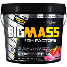 BigJoy Sports Big Mass +GH Factors 1200 Gr