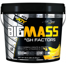BigJoy Sports Big Mass +GH Factors 3000 Gr