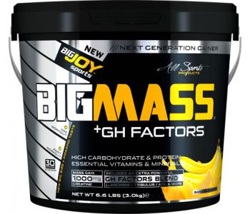 BigJoy Sports Big Mass +GH Factors 3000 Gr